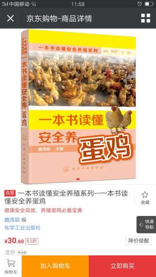 一本书读懂安全养殖系列--一本书读懂安全养蛋鸡 晒单图