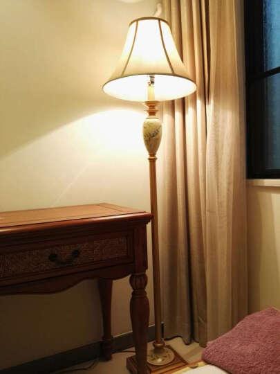 圣玛帝诺 北欧美式落地灯 客厅简约落地台灯家居沙发转角卧室床头脚踏落地灯 AV-1206黄色拉线 晒单图