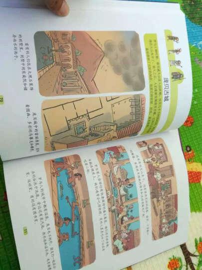 新编少儿百科全书(套装共13册) 晒单图