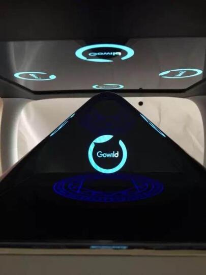 狗尾草(Gowild.cn)holoera琥珀虚颜 3D全息投影偶像养成智能陪伴机器人 琥珀银色 晒单图