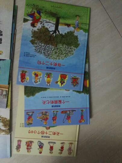 红袋鼠开心游戏·玩转艺术课:汽车贴纸 晒单图