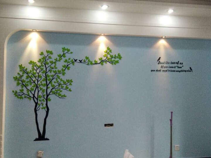 子翔立体墙贴情侣树3D墙贴画客厅卧室电视背景墙饰画环保亚克力墙贴 黑树右+玫红叶 大号适合3-4米墙面 晒单图