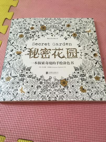 [台版]秘密花园进口原版Secret Garden手绘涂鸦解压填色书本 晒单图