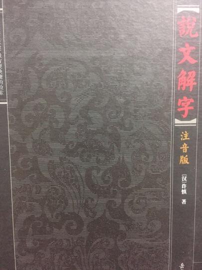 说文解字(注音版) (东汉)许慎  撰 岳麓书社  晒单图