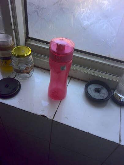 迪士尼(Disney)米妮塑料杯户外运动水杯子DS-0940 晒单图