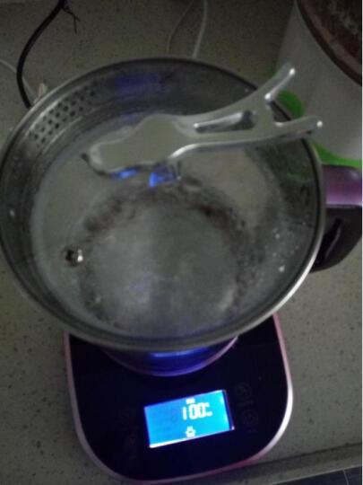 欧麦斯(OUMAISI) P801养生壶多功能玻璃杯养生壶双层防烫养生壶自动保温养生壶 中国红 晒单图