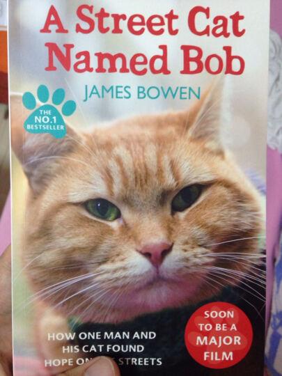 现货英文原版 一只名叫鲍勃的街头流浪猫 英文原版 街猫 A Street Cat Named Bob 晒单图