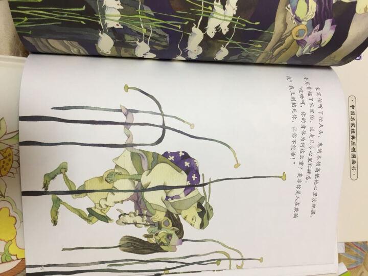中国名家经典原创图画书典藏系列第一辑:鹤民国+和合二仙+壶公+风神与花精等(套装共6册) 晒单图