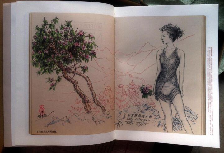 画中的日记:尼泊尔 晒单图