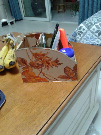 怡诺 遥控器收纳盒 桌面手机小物件收纳盒整理盒 金色树叶 晒单图