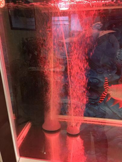 疯狂水草(FKSC)霸王 鱼缸超静音氧气泵增氧泵充氧泵 大型水族箱养鱼打氧泵机大功率 豹风双孔套餐二 晒单图
