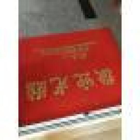 【支持定制】爱迪沃室外迎宾地毯  入户地毯欢迎光临门毯双条纹除尘毯酒店商厦门厅防滑毯 无字--纯色 定制价格单拍不发 晒单图