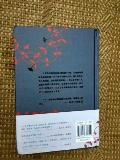 套装现货 杀死一只知更鸟+守望之心 共2册 关于勇气与正义的成长教科书  晒单图