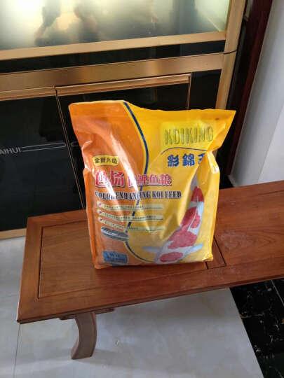 彩锦王(KOIKING)鱼粮中大型鱼食锦鲤色扬配方鱼饲料上浮型5kg(3.5mm) 晒单图