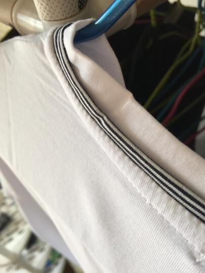 美国苹果(AEMPPE) t恤男 夏季新款衣服男装V领休闲修身上衣半袖纯棉印花短袖T恤 男 T345白色长袖丨兔头绣花 185/2XL 晒单图