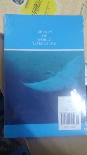 世界文学文库:瓦尔登湖(插图全译本) 晒单图