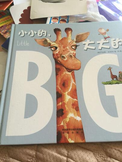 乐乐趣 小小的,大大的 2-3-4-5-6岁 幼儿园硬壳绘本故事书 儿童绘本启蒙 精装硬皮 晒单图