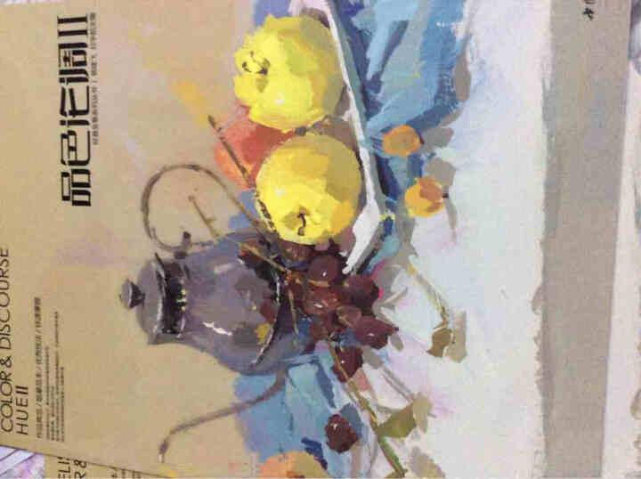 正版经典全集《品色论调II》杨建飞主编色彩静物色调色稿临本范本水粉基础入门教材书 晒单图