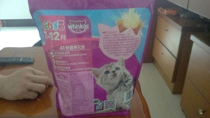 伟嘉幼猫及怀孕哺乳期猫粮海洋鱼味1.2kg 晒单图