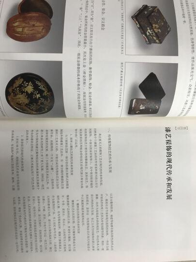 漆艺髹饰 百工录 中国工艺美术记录丛书 晒单图