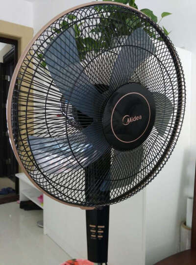 美的 FS40-13CR 电风扇 遥控落地扇家用扇静音定时摇头电扇 晒单图
