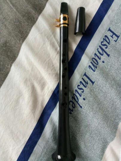 RL 小萨克斯11孔8孔迷你萨克斯 口袋次中高音萨克斯风简易儿童乐器 成人通用小萨 竖笛 11孔小萨-黑色+送哨片+教材+绒布袋+修剪器 晒单图