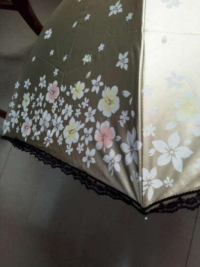天堂伞防紫外线女太阳伞防晒遮阳伞折叠晴雨伞晴雨两用三折伞时尚女士配饰 浅古铜 晒单图