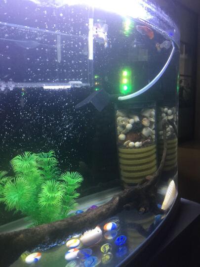 SOBO 鱼缸过滤器三合一内置过滤器鱼缸过滤桶增氧泵 小号20W+滤材 晒单图