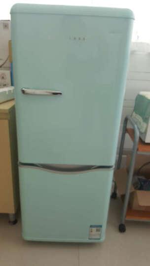 大宇(DAEWOO)ODF-M300M 150L 经典复古迷你小型双门电冰箱 家用无霜 冷藏保鲜 薄荷绿色 晒单图