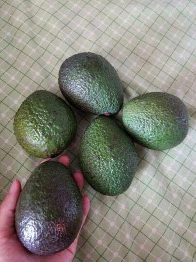 丰德临 牛油果6个装(单果170-210g)鳄梨京东生鲜热带水果 晒单图