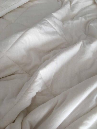云灿被子棉被 新疆棉花被  棉絮垫被褥子被芯 单双人适用 220*240双人加大 5斤秋冬推荐 晒单图