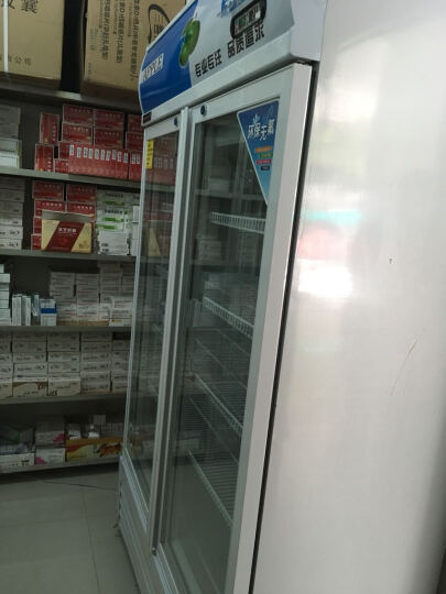 乐创(lecon)立式冰柜双门展示柜冷藏保鲜三门商用冰箱饮料超市冷柜水果厨房陈列柜凉菜点菜柜直冷风冷 双门蓝白色 风冷款 晒单图
