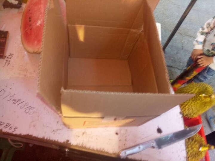 喇叭花草莓盒一次性水果盒透明包装盒枣盒 PVC材质盒一次性塑料樱桃盒蓝莓盒子葡萄盒100个 (约500克装)SM-010 晒单图