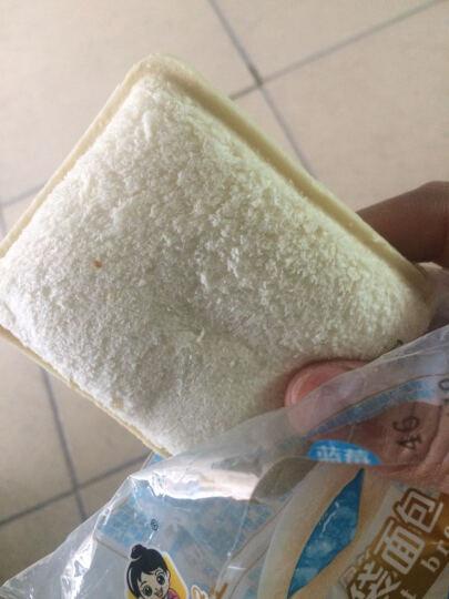 孝贤公主 口袋面包 办公室早餐手撕三明治草莓蓝莓芒果菠萝夹心蛋糕送女友送孩子零食 蓝莓味2斤 晒单图