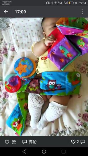 婴儿玩具宝宝布书 立体撕不烂益智早教启蒙学习球套装 布书两套组合装(总十本) 晒单图