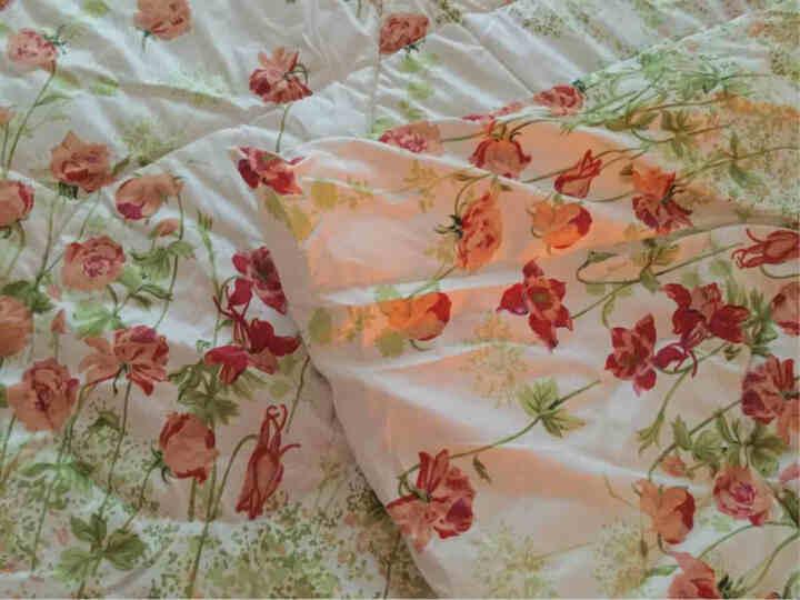 度艾妮家纺 优舒绒印花多功能抱枕被 枕头被子两用办公室抱枕空调被靠垫 镜花缘 展开145*190cm 晒单图