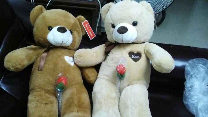 莱克咪 圣诞礼物大号毛绒玩具泰迪熊公仔毛衣抱抱熊熊猫玩偶布娃娃送女生生日礼物 纯白浪漫熊丝带款 0.8米 晒单图