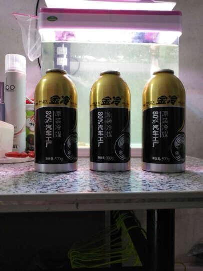 金冷 冷媒HFC-134a 环保雪种 汽车空调制冷剂 300克/罐 3瓶金冷媒 晒单图