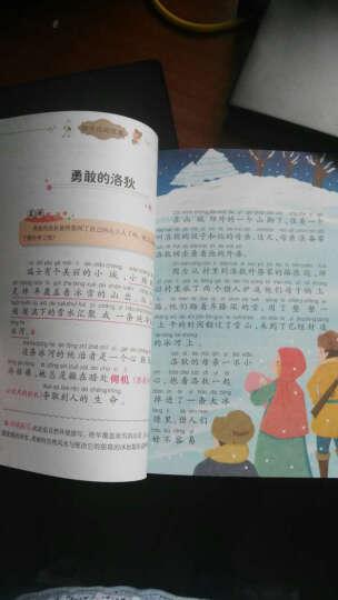 【中外民间故事】注音美绘版 小学生语文阅读丛书6-12岁儿童文学课外名著无障碍阅读 晒单图