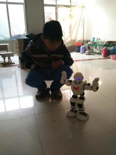 优必选(UBTECH) 阿尔法1P人工智能机器人学习机器人6岁+编程教育儿童机器人 Alpha 1P 晒单图