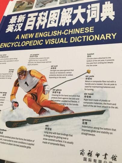 英汉百科图解大词典【彩图双语】学生儿童英汉对照生活百科字典 晒单图