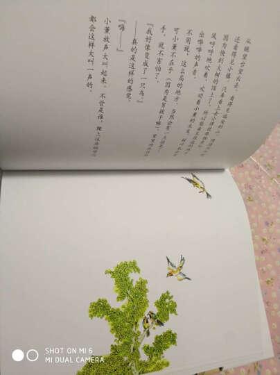 想要一棵好大的树(2014版) (爱心树童书) 晒单图