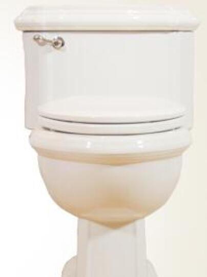 圣托玛斯(ST.THOMAS CREATIONS) 圣托玛斯马桶圣托马斯喷射坐便器组合 连体马桶 坑距305 晒单图