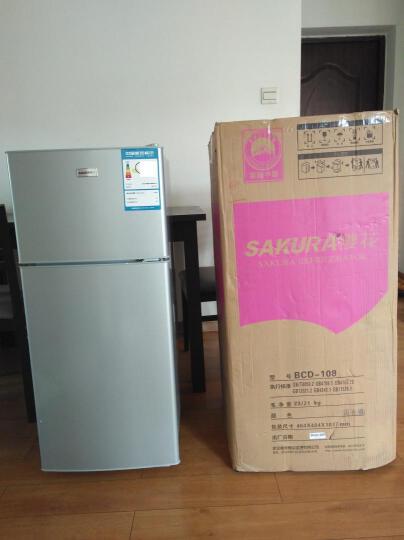 樱花(SAKURA) 高880mm双门迷你小冰箱 迷你电冰箱 冷藏冻家用冰箱BCD-58 银色 晒单图