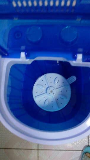 小鸭 2.5公斤 迷你单筒半自动婴儿童小洗衣机 XPB25-268D 晒单图