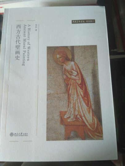 中央美术学院规划教材:西方古代壁画史 晒单图