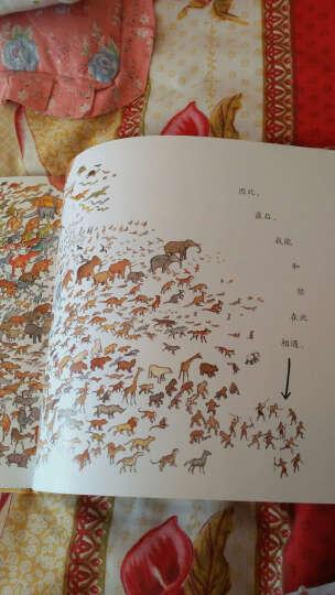 蒲蒲兰绘本馆 一条聪明的鱼 儿童经典绘本 亲子共读书籍 晒单图