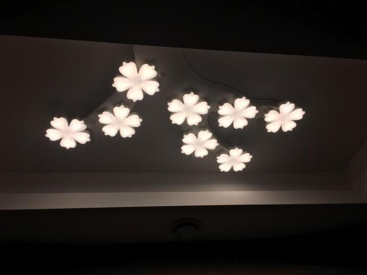 灯屋 北欧创意客厅吸顶灯现代简约时尚风格个性铁艺餐厅卧室书房办公室LED梅花灯具 1头 造型见详情 白光 晒单图