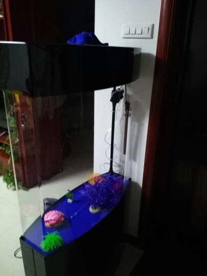 E家E缸 中型屏风鱼缸水族箱亚克力生态免换水鱼缸 客厅 黑色 80cm旗舰套餐(干湿分离上滤送368) 晒单图