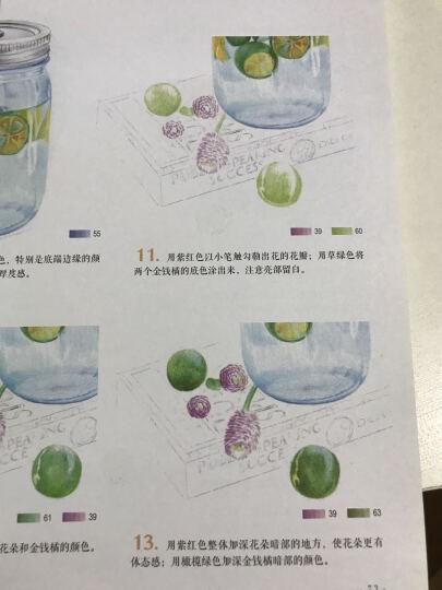 水彩美食绘 晒单图